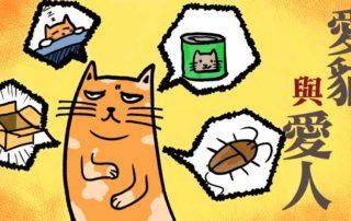 《愛貓與愛人》|負文學
