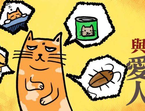 《愛貓與愛人》